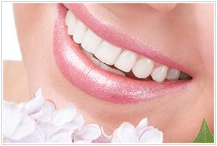 美しい白い歯